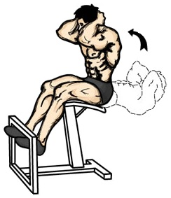 Trening Arnolda