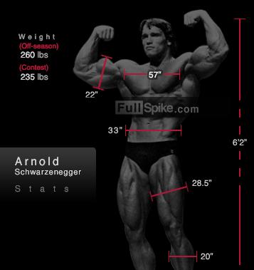 Arnold Schwarzenegger wymiary